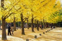 娜米海岛,韩国- 10月25 :拍照片的游人 库存照片