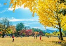 娜米海岛,韩国- 10月25 :拍照片的游人 图库摄影
