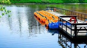 娱乐ferris晚上公园向量轮子 在池塘的水表面的背景的水自行车 风景 免版税库存图片