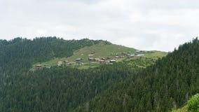 婆罗双树高原全景在黑海,里泽,土耳其 库存照片