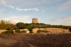 婆罗双树Rossa中世纪塔在日出的在伊维萨岛 库存照片