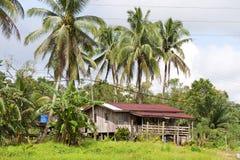婆罗洲房子 免版税图库摄影