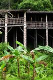 婆罗洲沙捞越部族longhouse结构 免版税库存图片