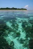 婆罗洲sipadan珊瑚岛的礁石 免版税图库摄影