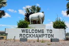 婆罗门公牛雕象在Rockhampton,昆士兰,澳大利亚 免版税库存照片