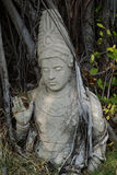 婆罗门神雕象 库存照片