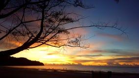 婆罗洲日落 库存照片