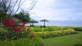 婆罗洲海滩 库存图片