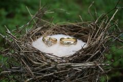 婚姻圆环 图库摄影