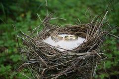 婚姻圆环 免版税图库摄影