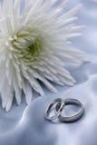 婚姻白色的金戒指 免版税库存照片