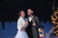 婚姻美好的冬天户外 免版税库存图片