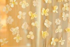 婚姻背景背景的白花瓣 婚礼特殊场合事件,装饰概念 库存图片