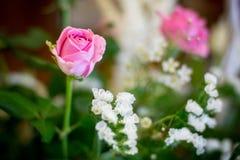 婚姻装饰的花 库存照片