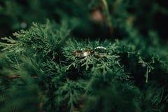 婚姻金黄的环形二 新娘仪式教会新郎婚礼 概念亲吻妇女的爱人 免版税库存图片