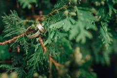 婚姻金黄的环形二 新娘仪式教会新郎婚礼 概念亲吻妇女的爱人 库存图片