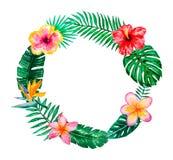 婚姻,周年、生日、邀请、卡片、日期等等的水彩热带花卉例证花圈 保存日期! 免版税库存图片