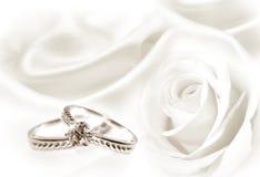 婚戒和白色玫瑰 库存照片
