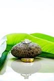 婚戒在与绿色叶子和反射的一块石头设置了 免版税图库摄影