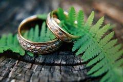 婚戒在森林里 库存图片