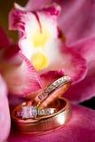 婚戒坐一朵美丽的桃红色花 免版税库存照片