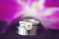 婚戒套新娘和新郎反对一朵紫色兰花 库存照片