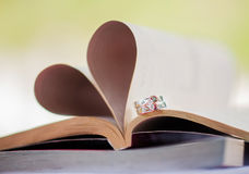 婚戒您和我,爱的证人 免版税库存照片