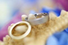 婚戒的五颜六色的安排 免版税库存图片