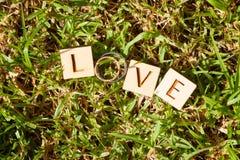 婚戒,爱 免版税库存图片