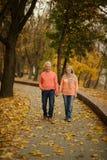 结婚的夫妇成熟 免版税图库摄影