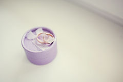 婚礼在紫色箱子的金戒指在白色背景 免版税图库摄影