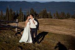 婚礼夫妇亲吻 在背景的美丽的山 免版税库存图片