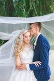 婚礼夫妇亲吻的被盖的面纱 婚姻的浪漫夫妇互相拥抱 有新郎的秀丽新娘 库存照片