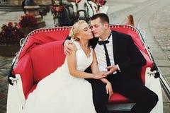 婚礼夫妇在红色开放支架坐 库存图片