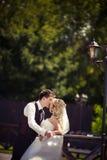 婚礼夫妇拥抱 免版税库存照片