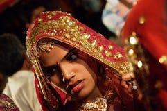 婚礼客人 免版税库存图片