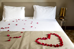 婚礼床冠上与玫瑰花瓣 图库摄影
