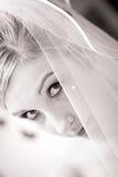 婚礼新娘表面半隐藏面纱 图库摄影