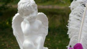 婚礼曲拱,装饰,仪式,天使 股票视频