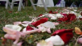 婚礼曲拱,装饰,仪式,花 股票录像