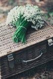 婚礼照片 图库摄影