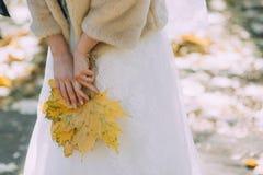 婚礼礼服和一件自然皮大衣的新娘在槭树的手黄色下落的叶子举行 库存图片