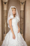 婚礼礼服和新娘面纱的p美丽的微笑的新娘妇女 库存图片