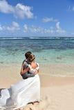 婚礼礼服的新鲜的新婚佳偶在加勒比岛上 库存图片