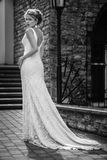 婚礼礼服的美丽的女孩 免版税库存照片