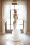 婚礼礼服的美丽的新娘与摆在长的新娘的面纱  免版税图库摄影