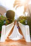 婚礼礼服的美丽的新娘与站立在的长的火车 免版税库存照片