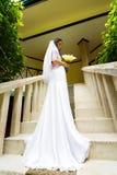 婚礼礼服的美丽的新娘与站立在的长的火车 免版税库存图片