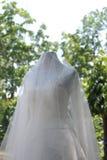 婚礼礼服自然背景 免版税库存照片