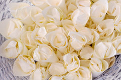 婚礼米 免版税库存图片